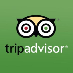 hide+bad+review+tripadvisor